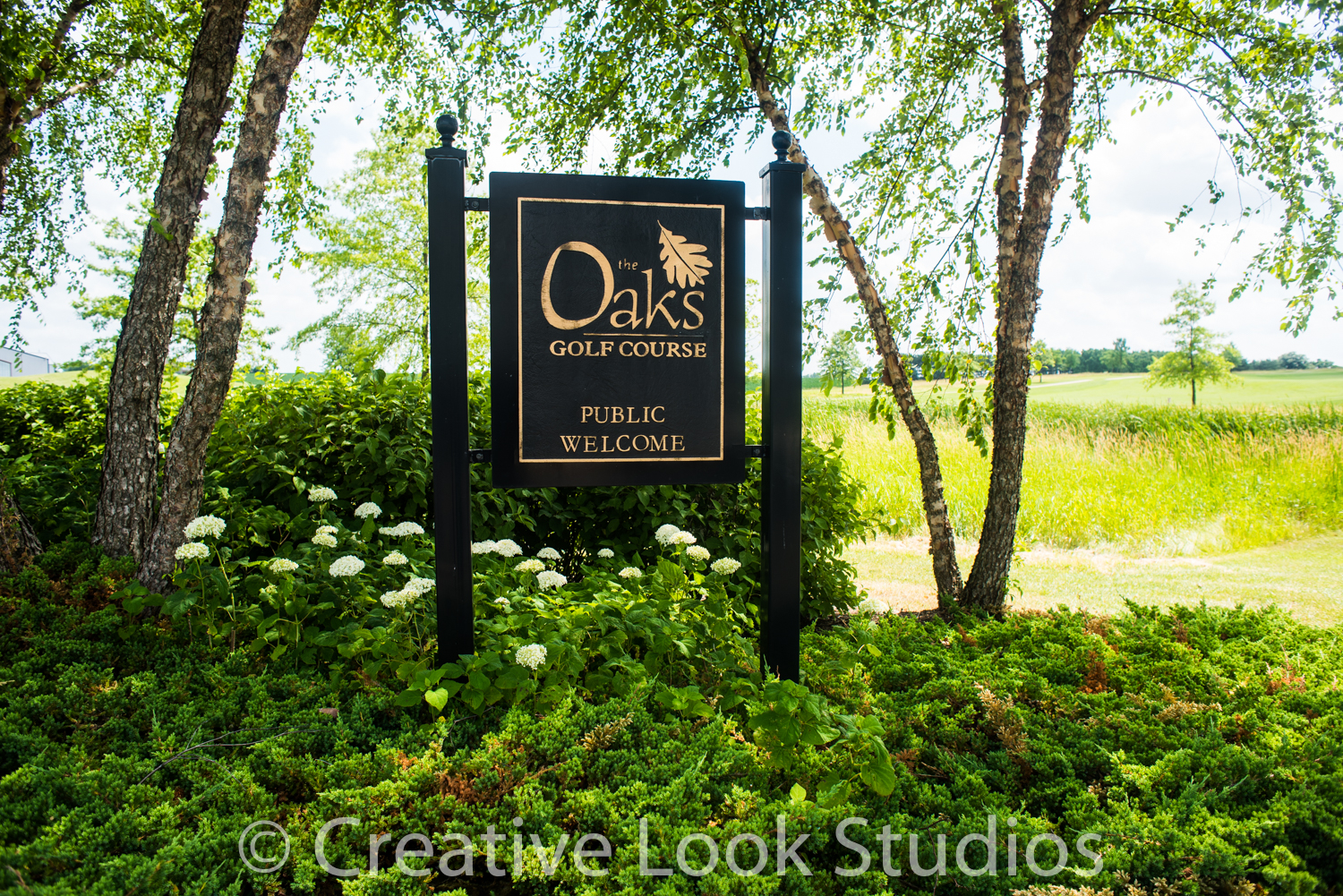 wedding photographer oaks golf course